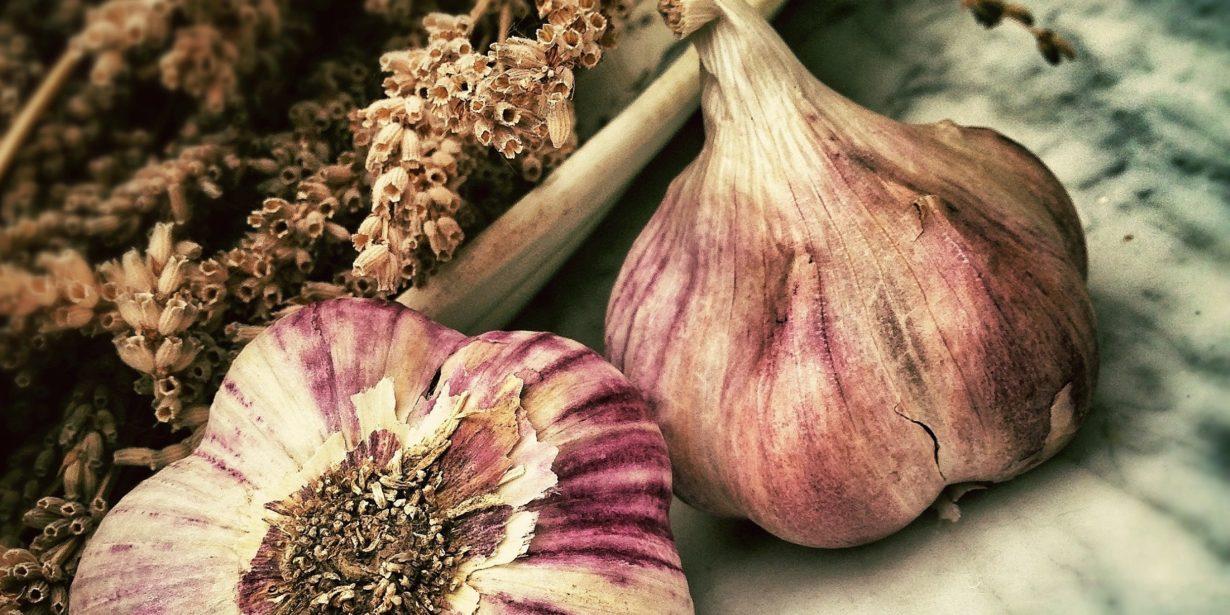 UK garlic