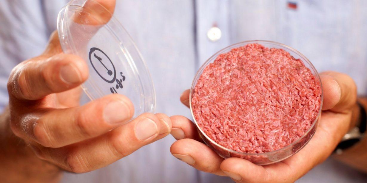 Alternative Protein Startups
