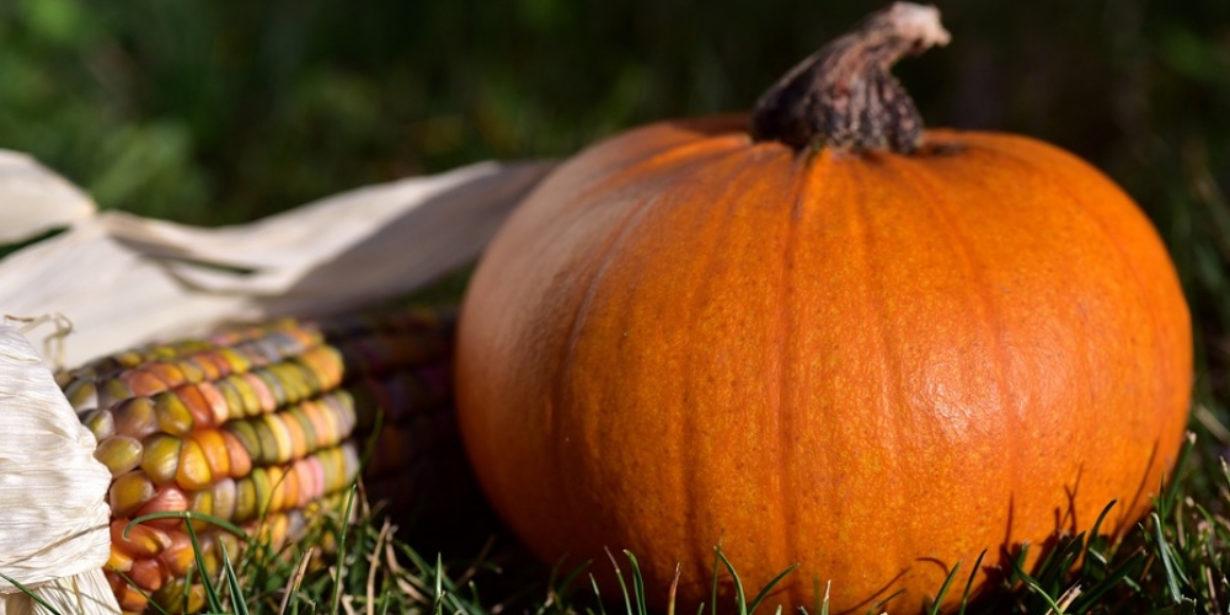Halloween food waste