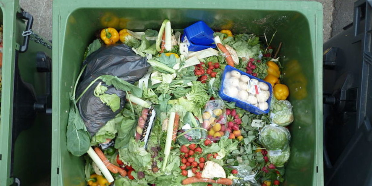 supermarket food waste