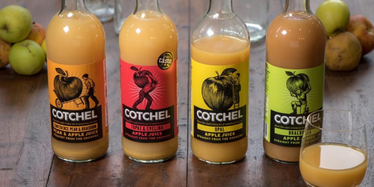 Cotchel