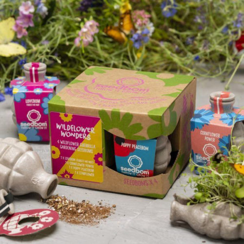 Kabloom Seedbom Gift Set – Wildflower Wonders