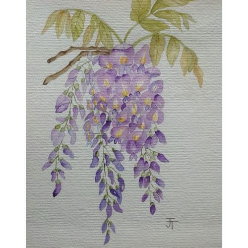 Anjeli Art's Original Watercolour Painting