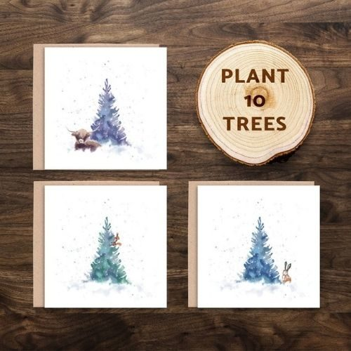 Eco Friendly Christmas Card Pack